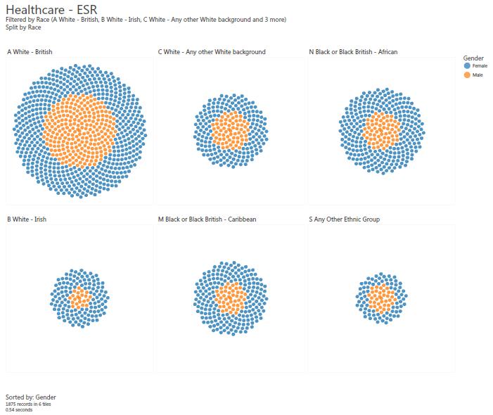 Visualisations on OrgVue 1.8