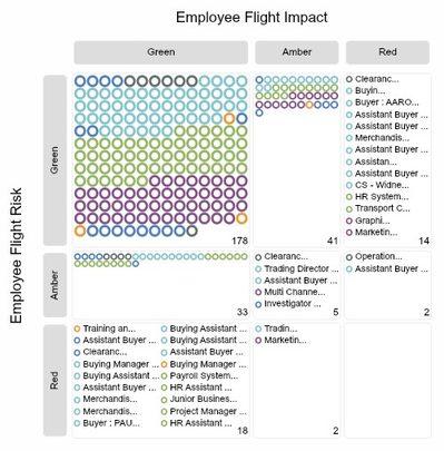 OrgVue - Flight Risk Mapping Process