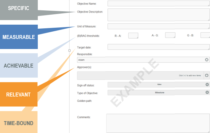 Sample Objectives Webform in OrgVue