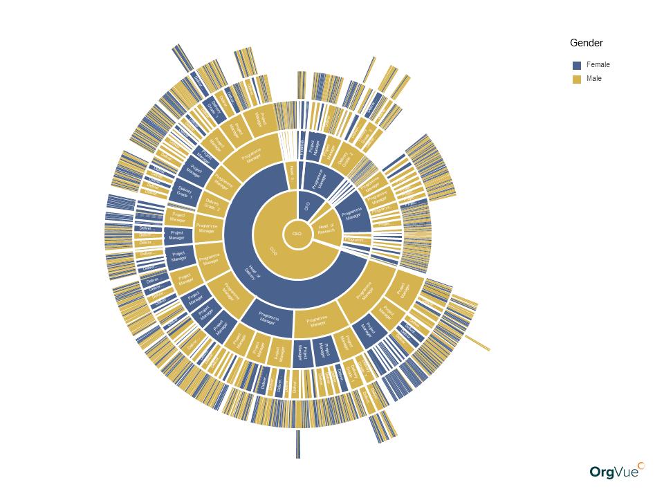 Orgvue organizational charts starburst by gender