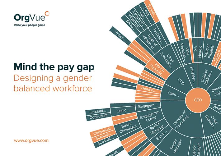 orgvue gender pay gap ebook page image header